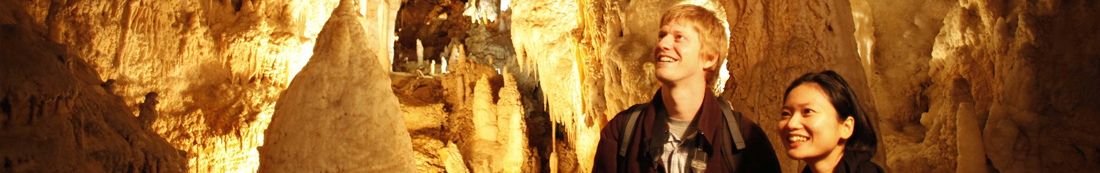 waitomo-cave-header